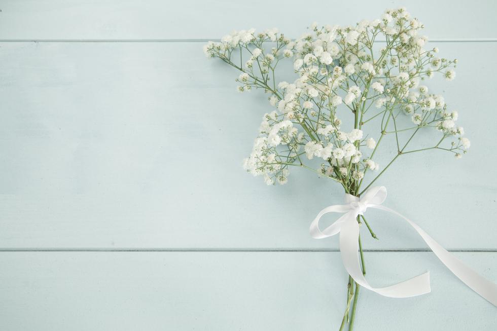かすみ草の花言葉<Kasumi grass> 感謝、清き心、無邪気、切なる願い