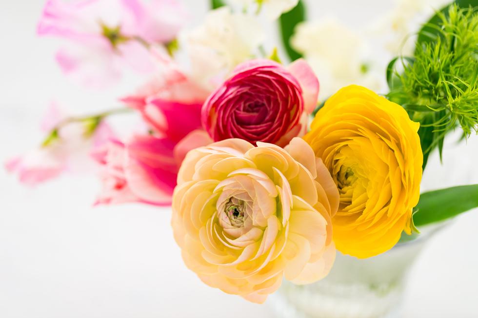 ラナンキュラスの花言葉<Ranunculus> 魅力