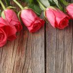 バラ<Rose>の花言葉 赤「愛情」白「純潔」ピンク「上品」黄色「嫉妬・友情」