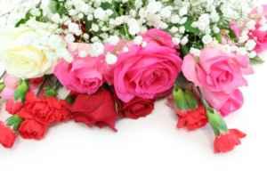 春の季節に 感謝・ありがとうを贈るための花言葉