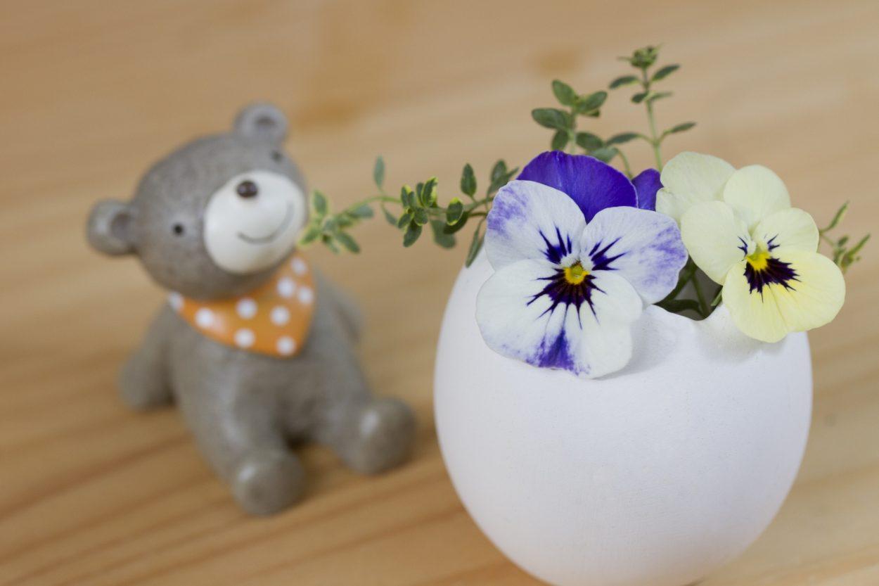 パンジーの花言葉 私を思って、もの思い、つつましい幸せ、田舎の喜び