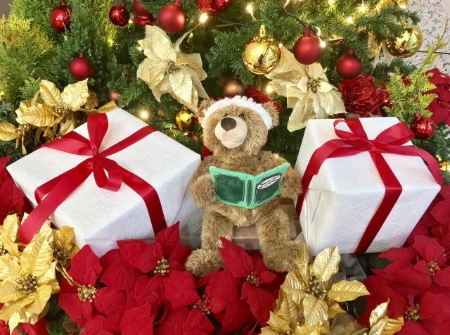 クリスマスの代名詞!ポインセチアの花言葉や花名の由来、誕生花